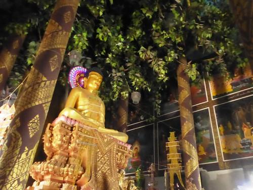 n-lumbini-est-Sri Lanka (10)