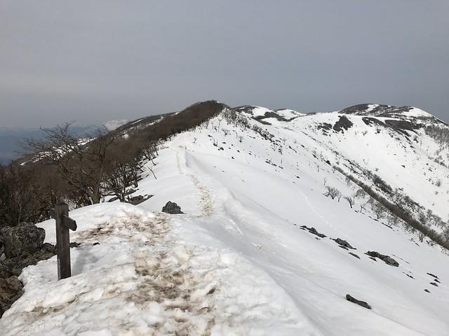 霊仙山 今畑ルート 西南尾根 近江展望台