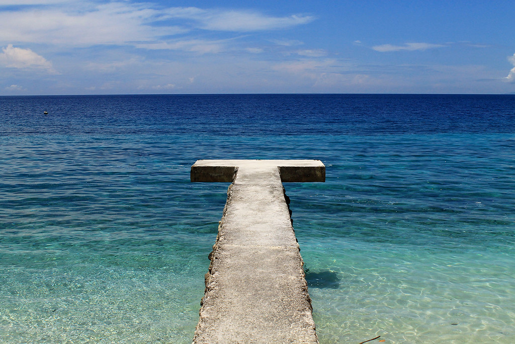 seafari resort oslob 3