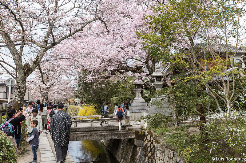 Paseo-Filosofia-Kioto-74