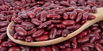 Cara Mengobati Batu Ginjal Menggunakan Kacang Merah