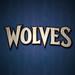 2013 Minnesota Timberwolves 4