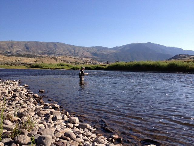 Colorado River Guided Fly Fishing Trip Flickr Photo