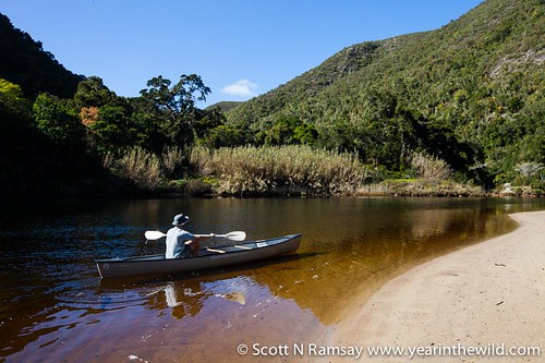 Keurbooms River Nature Reserve - South Africa | by scottnramsay