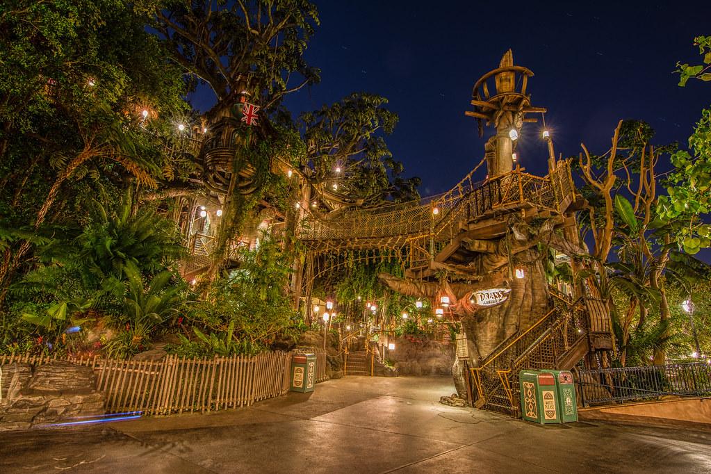 Tarzan Treehouse Inside