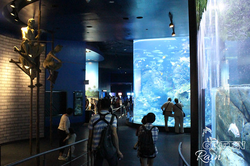 160908d Maritime Museum and SEA Aquarium _410