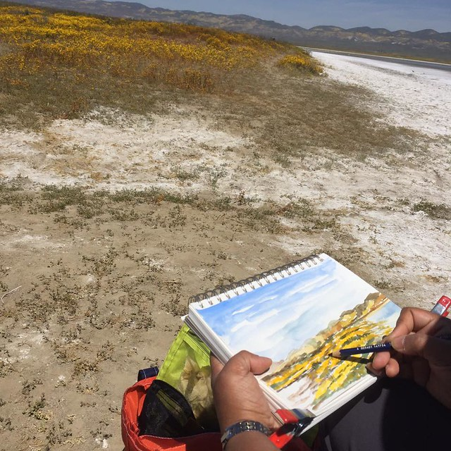 Suma sketching super bloom