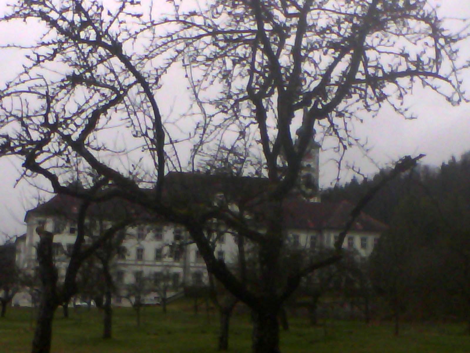 Kloster Schäftlarn von hinten, mit Obstgarten, 22. März 2017