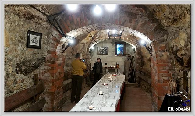 Bodegas medievales don Angel y don Carlos en Aranda de Duero  (11)