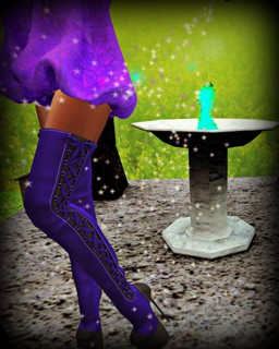 TDF - HIgh Life Solids RFL Boots | by melyna.foxclaw