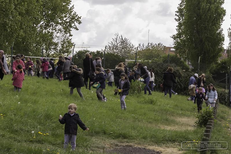 Chasse aux Oeufs Roubaix