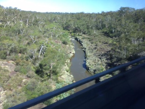 River through the bush. From I caught the bus to Sydney