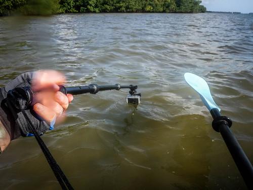 Indian River Paddling-23