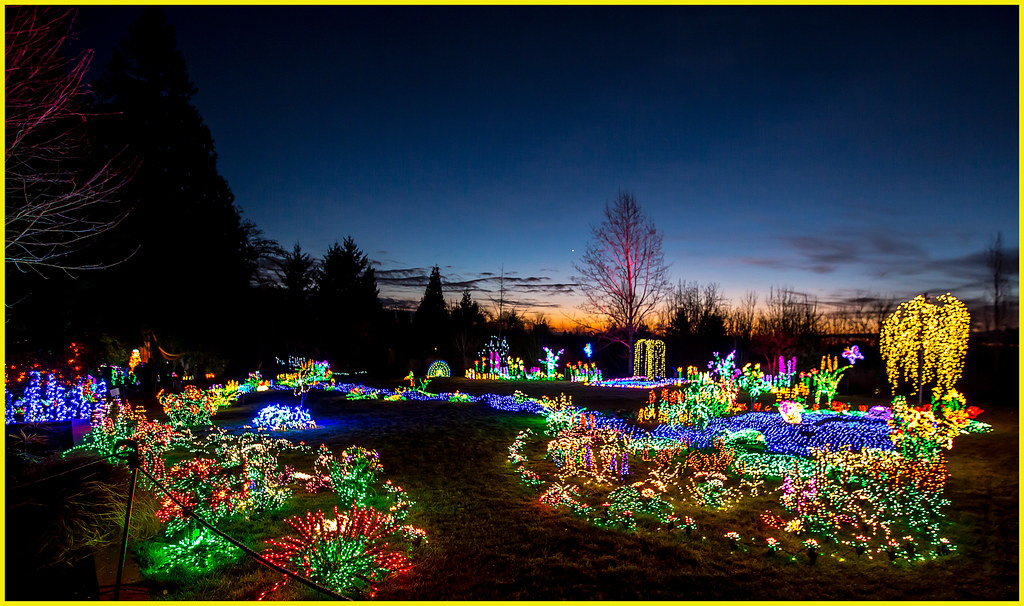 ... Sunset At Bellevue Botanical Garden Lights | By KPortin