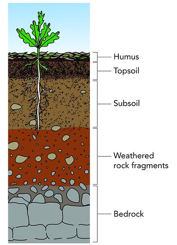 Layers of soil illustration used in gr 4 6 natural for 6 layers of soil