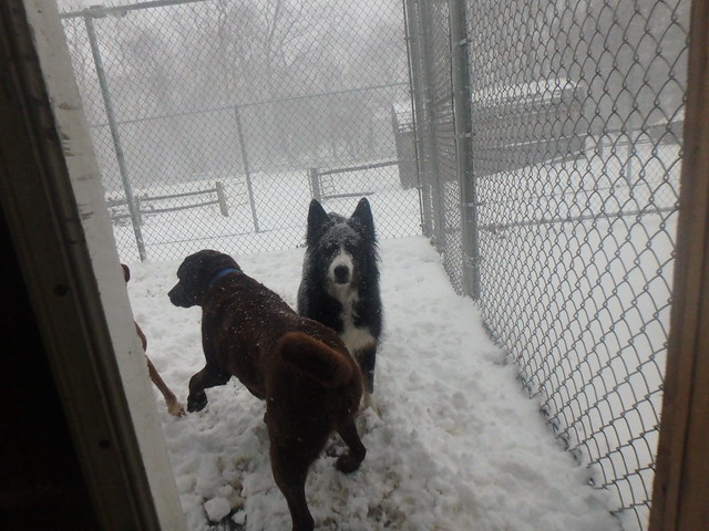 02_09_17 Snow Day Play :-)