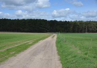Fläming Rundwanderweg 12 Südroute