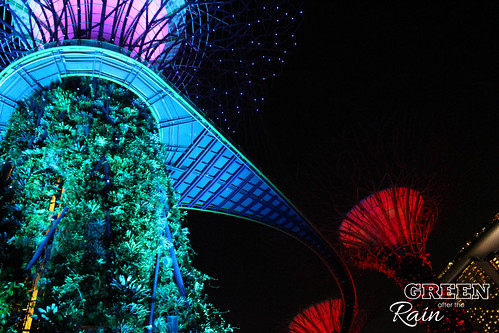 160910f OCBC Skywalk Gardens by the Bay _002