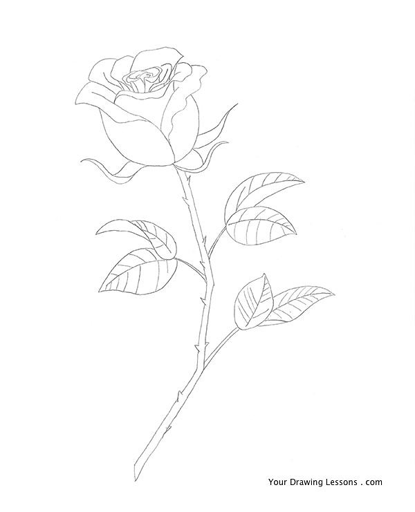 Image Result For Design Coloring Page