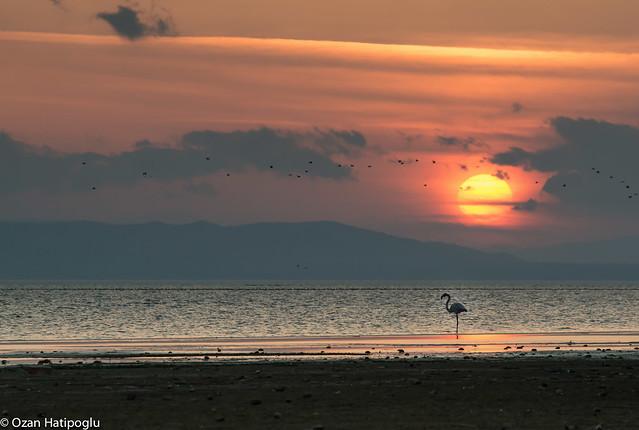 sunset over manyas