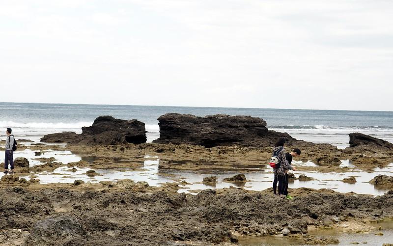 萬里桐海域曾經是珊瑚礁資源豐富,如今死寂一片,令生態愛好者惋惜。攝影:李育琴