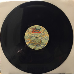 SKYY:SKYYPORT(RECORD SIDE-B)
