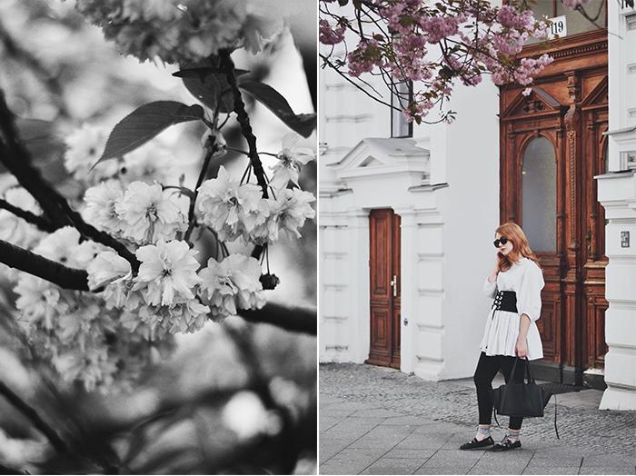 Corset-Belt-Cherry-Blossom-5