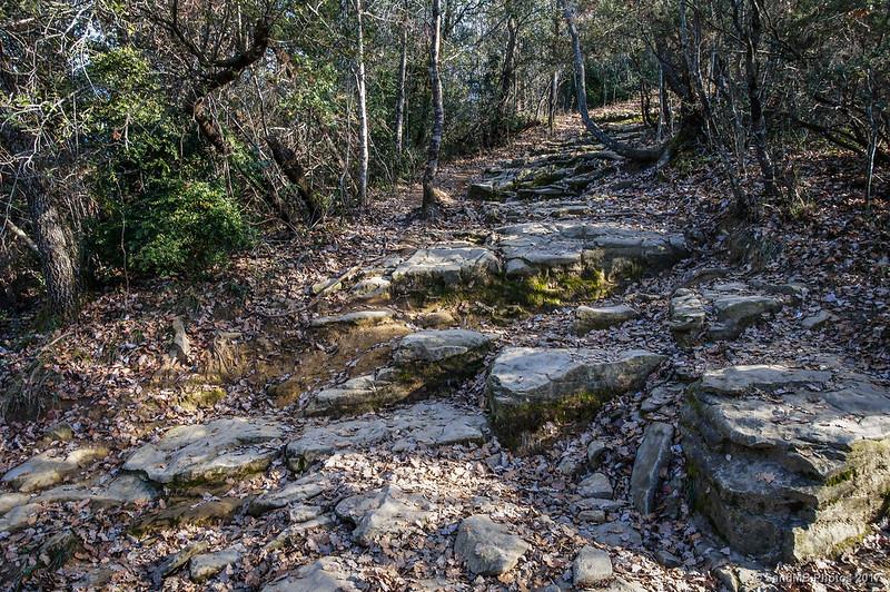 Camino que baja de Cantonigròs a La Foradada