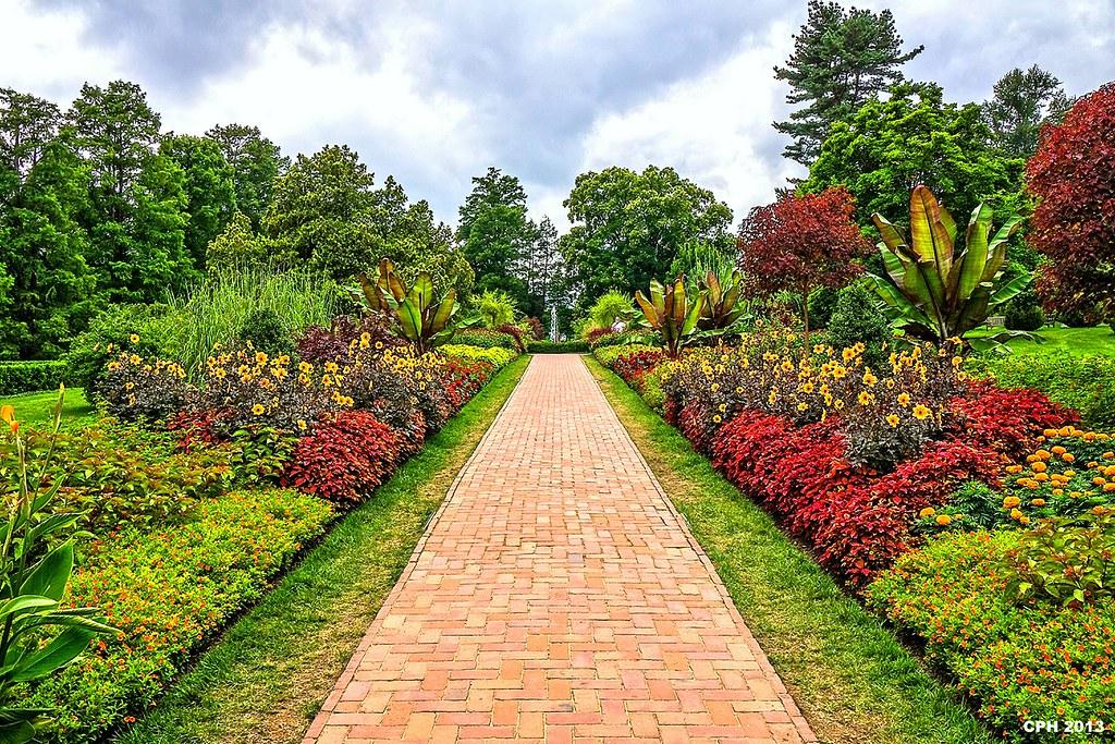 ... 557) Kennett Square PA, Longwood Gardens   Flower Garden Walk Scene  [409]