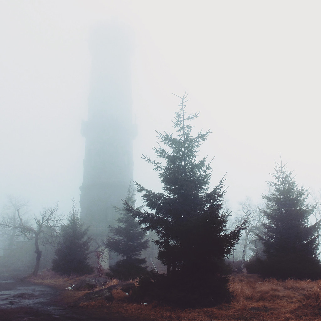 Im Nebel auf dem Hohen Schneeberg