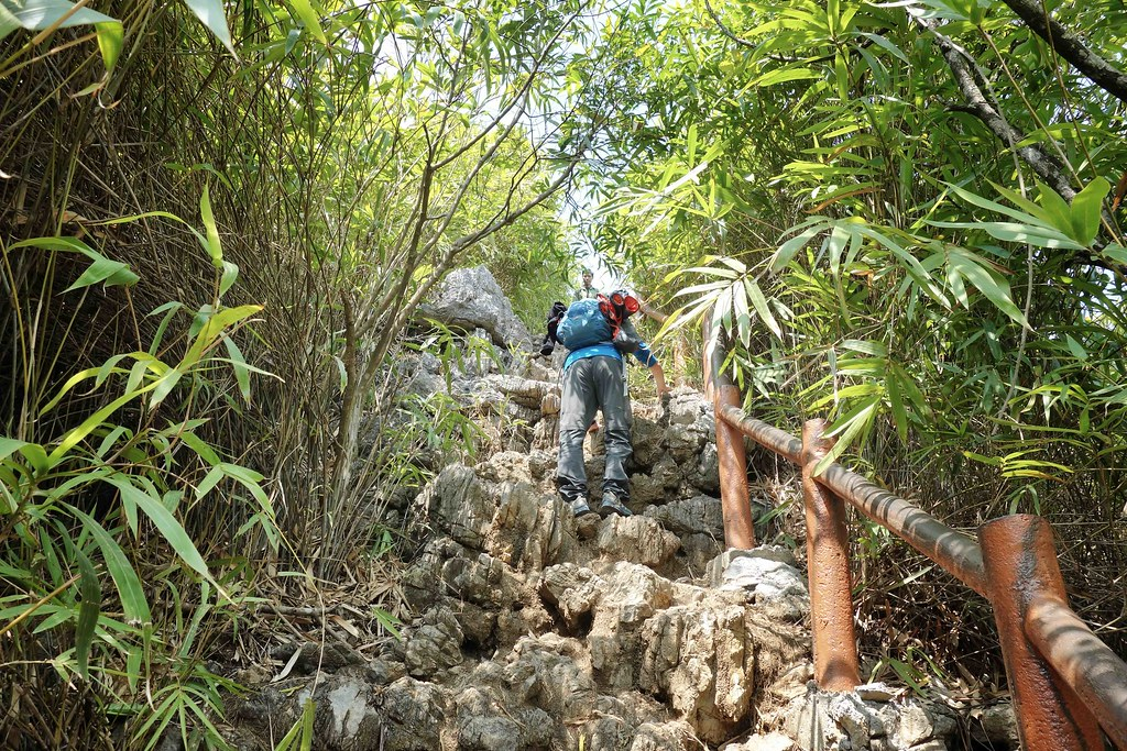 Cat Ba National Park - Ngu Lam Peak 4
