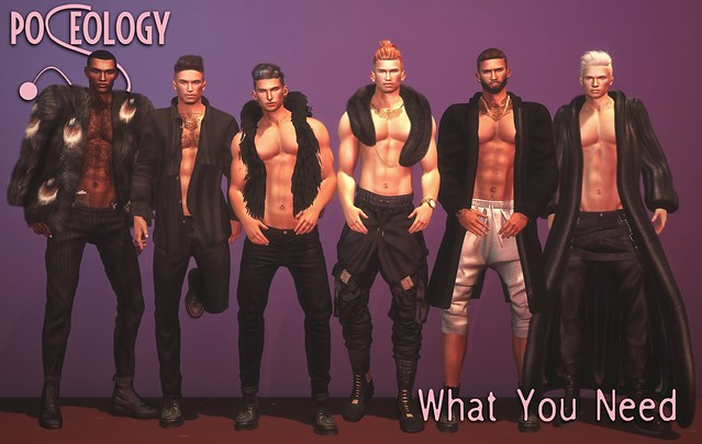 Poseology Poses - What You Need