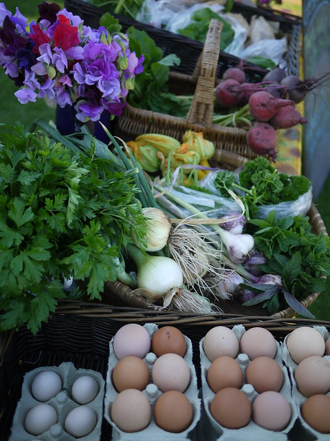 Steepholding veg box and eggs