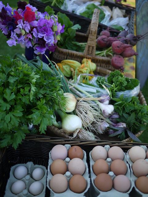 Steepholding veg box and eggs