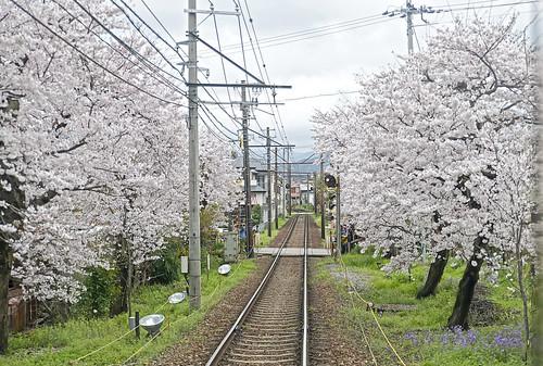 Randen Line