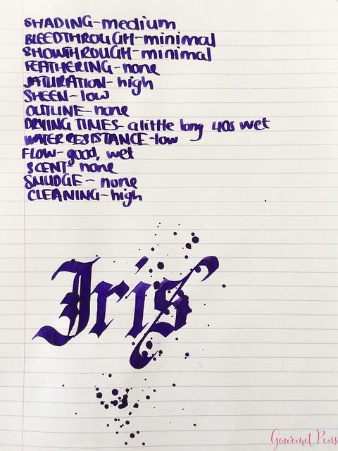 Ink Shot Review Diamine Flowers Iris @AppelboomLaren 5