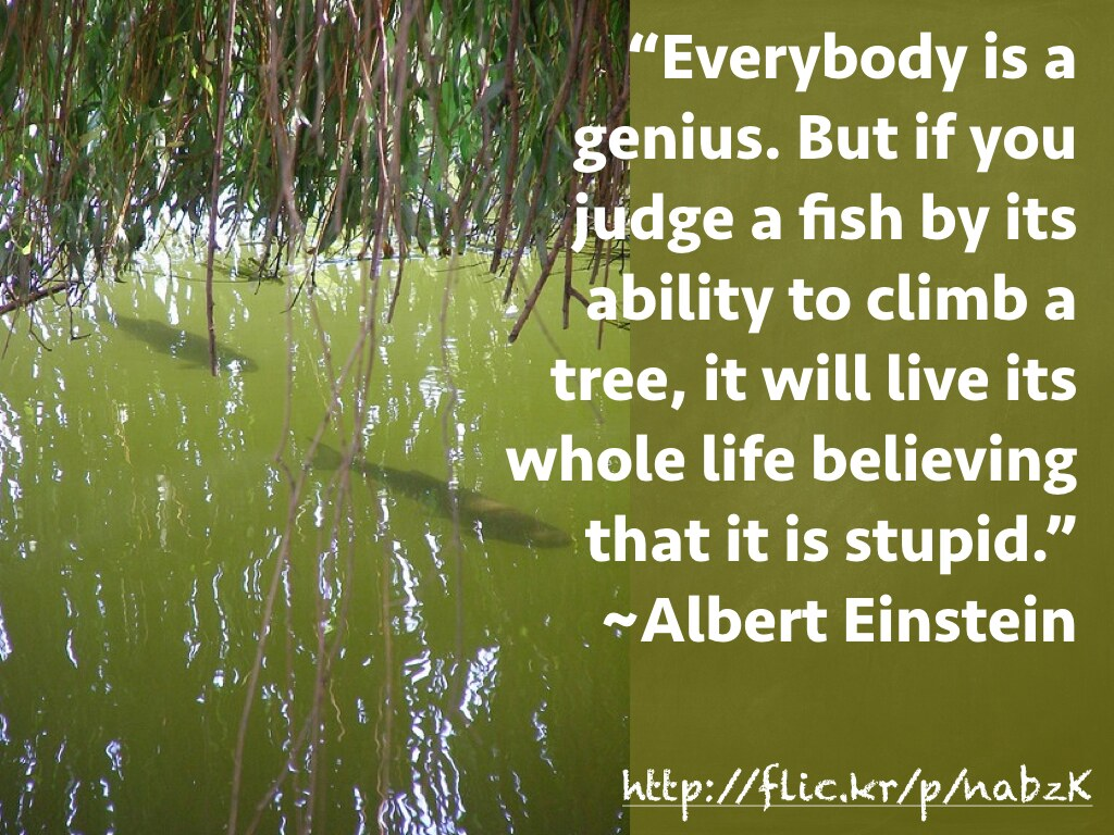 Quote Albert Einstein Everybody Is A Genius But If You Flickr