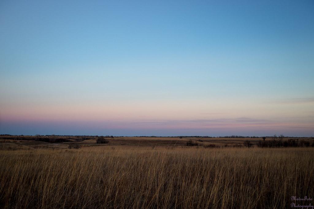 tall grass field sunset. Tallgrass Prairie After Sunset   By Kay Martinez Tall Grass Field
