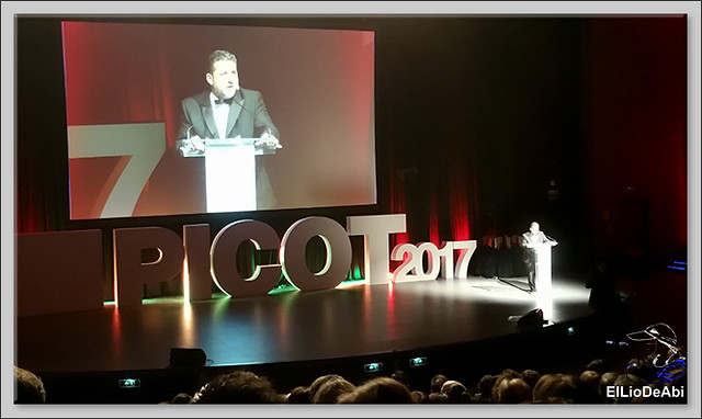 Castilla y León Travel Bloggers, finalistas en los Premios PICOT 2017 10