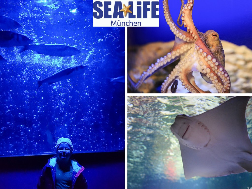 Sea Life Munich