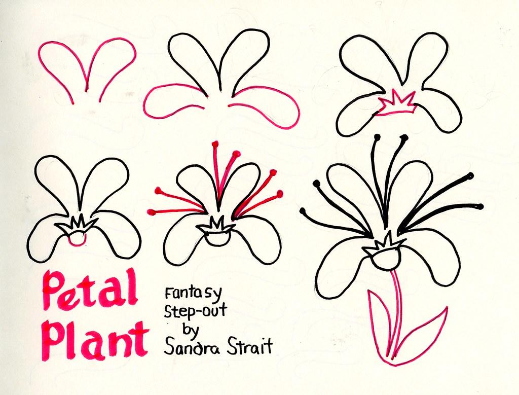 Petal Plant Fantasy Step-out | Sandra Strait | Flickr