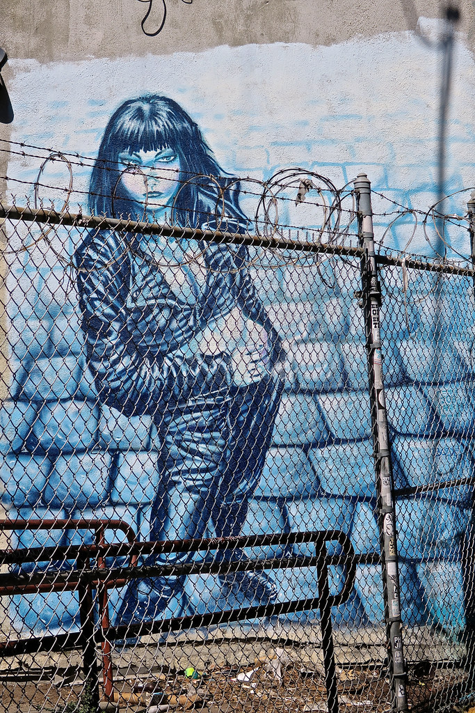 Fenced In, San Francisco, CA | Street art on a wall behind a… | Flickr