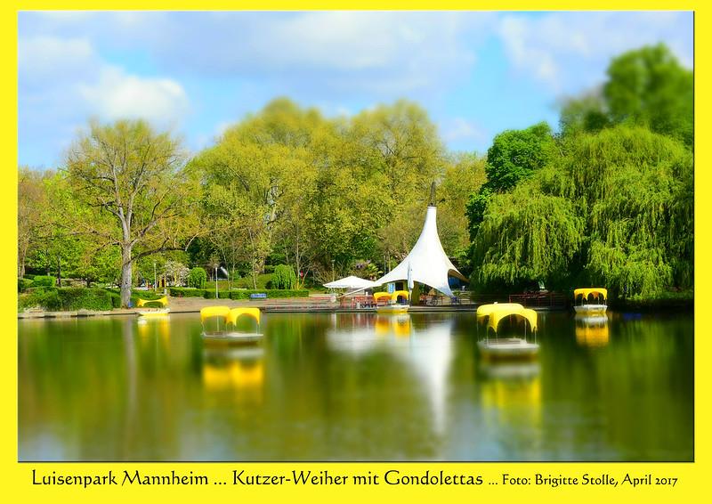 Luisenpark Mannheim, April 2017: Kleines Frühstück mit Blick auf den Kutzerweiher und die gelb leuchtenden Gondolettas. Gezählt habe ich sie nicht, aber es sollen ingesamt 45 seilgeführte Boote sein ... Fotos und Collagen: Brigitte Stolle
