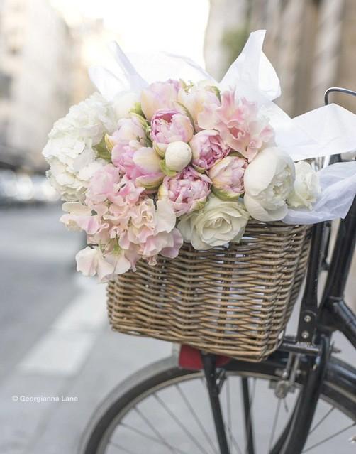 FlowersinBicycleBasket