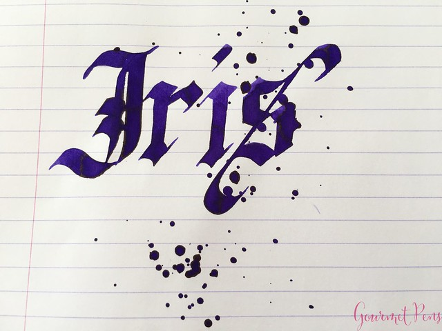 Ink Shot Review Diamine Flowers Iris @AppelboomLaren  6