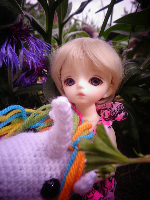 Lullaby, ma petite Neko Haroo 34222381522_bc5339bcf7_z