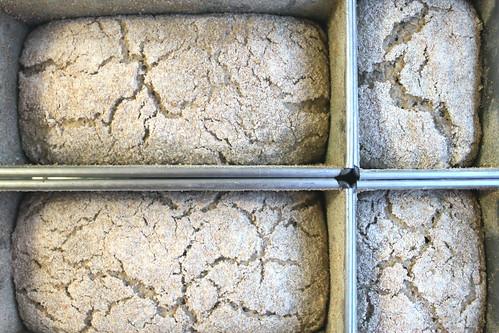 Walliiser Roggenbrot fermentados