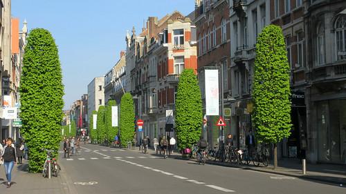 Bondgenotenlaan, Leuven