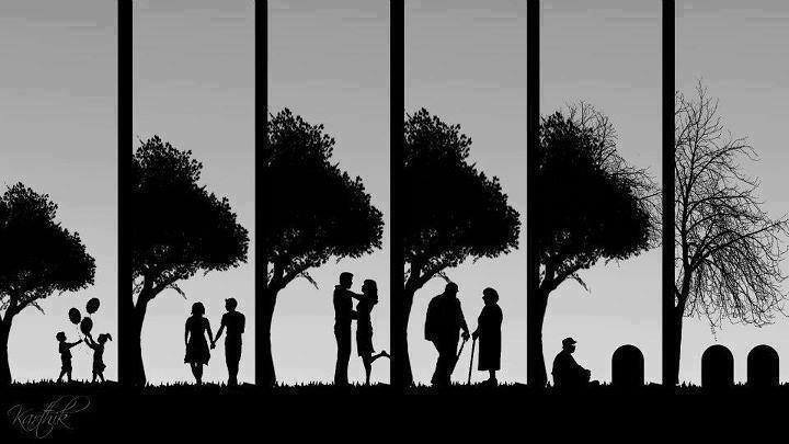 Image result for stages of life