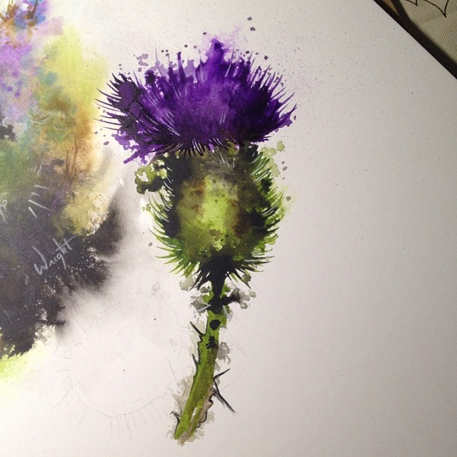 Scottish Thistles Tattoos Designs Scottish Thistles: Watercolor Thistle Tattoo Art Part 2 (kill The Background